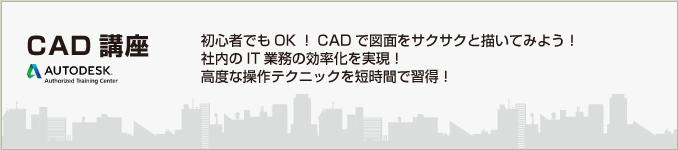 CAD_head